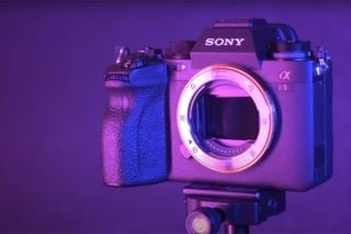 New Sony Alpha 1 - our first thoughts