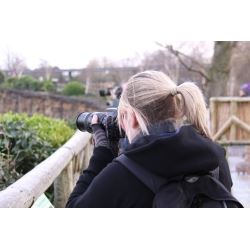 Chester Zoo Wex Photographic