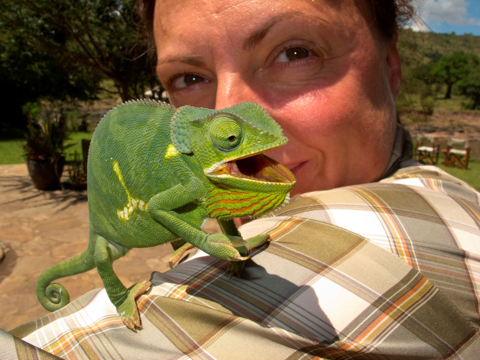 Sue-Flood-with-chameleon-at-KB-camp.jpg