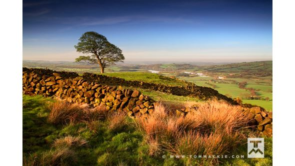 Tom Mackie - 10 Tips for Landscape Images