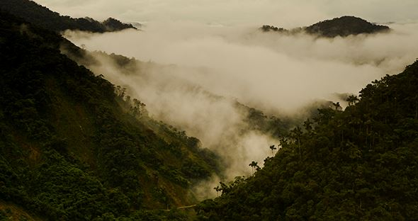 The-view-down-into-the-Cloud-Forest-below-one-of-the-most-impressive-I-have-ever-whitnessed.jpg