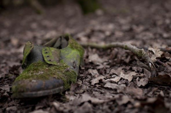March 2015 Google+ Photography Competition - Decay - Third place