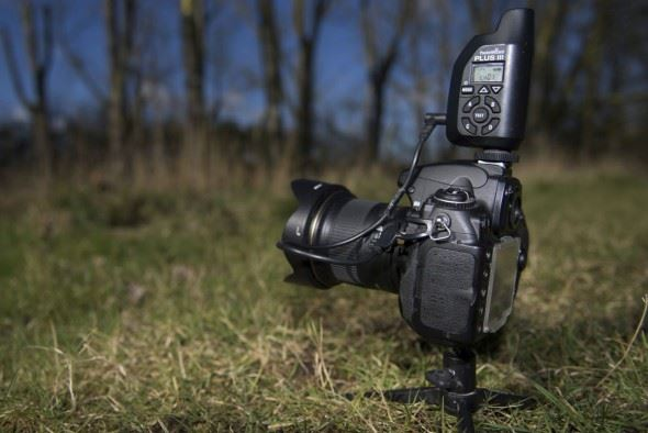 Six Top Accessories for Wildlife Photographers