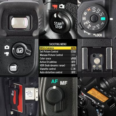 Getting Started with your DSLR: The Basics