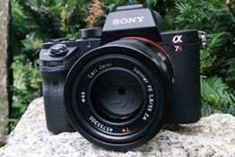 Sony Alpha A7R Mark II Review – Why I Switched from a DSLR