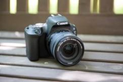 Canon EOS 200D Digital SLR Body | Wex Photo Video
