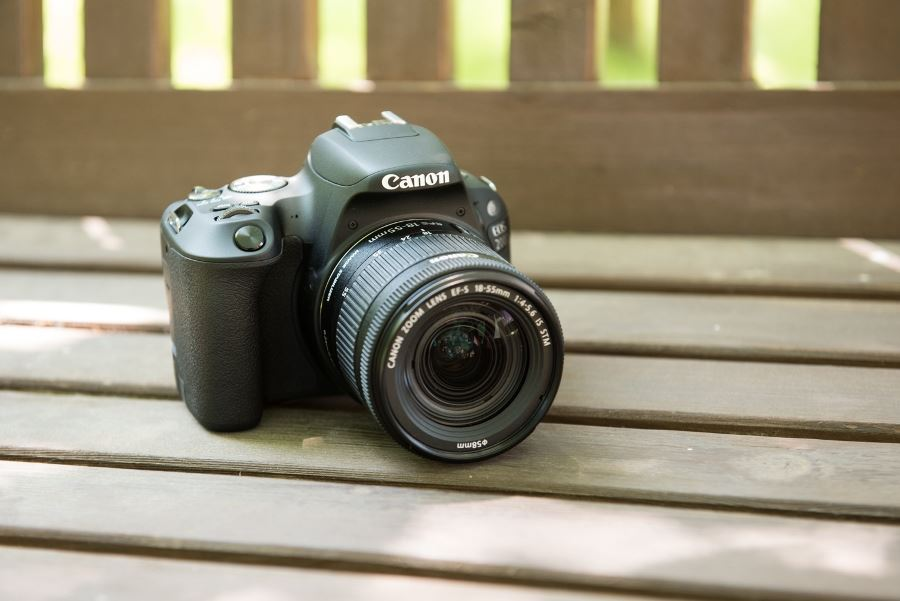 Should I Buy a Canon EOS 200D or 1300D? | Wex Photo Video