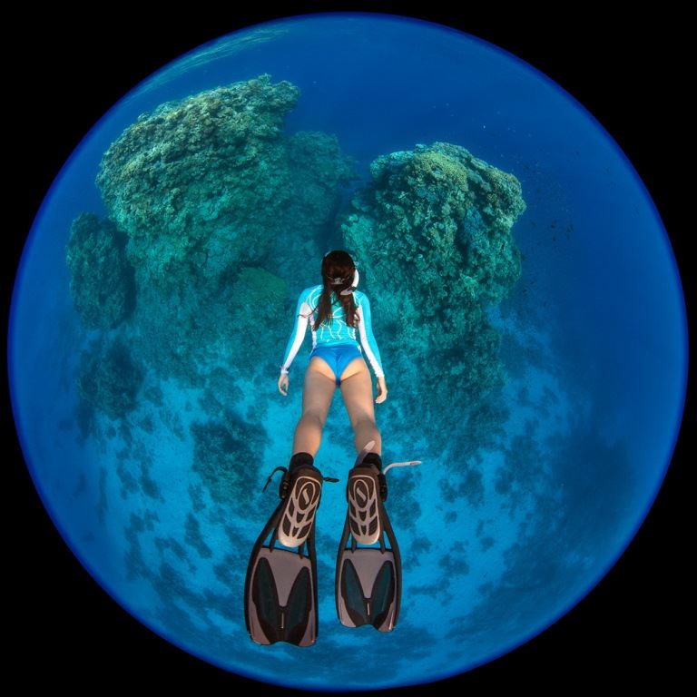 Shooting Underwater with the Nikon 8-15mm FX Fisheye