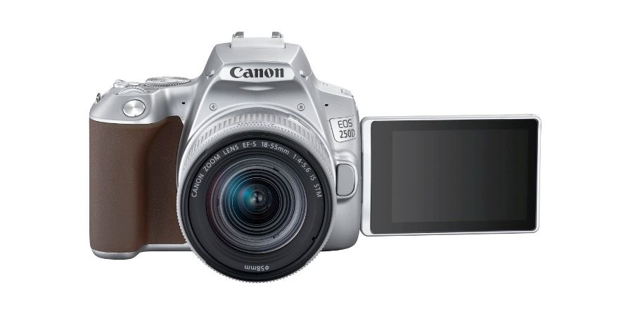wex-photo-video-canon-250d-(3)-10-04-19.jpg
