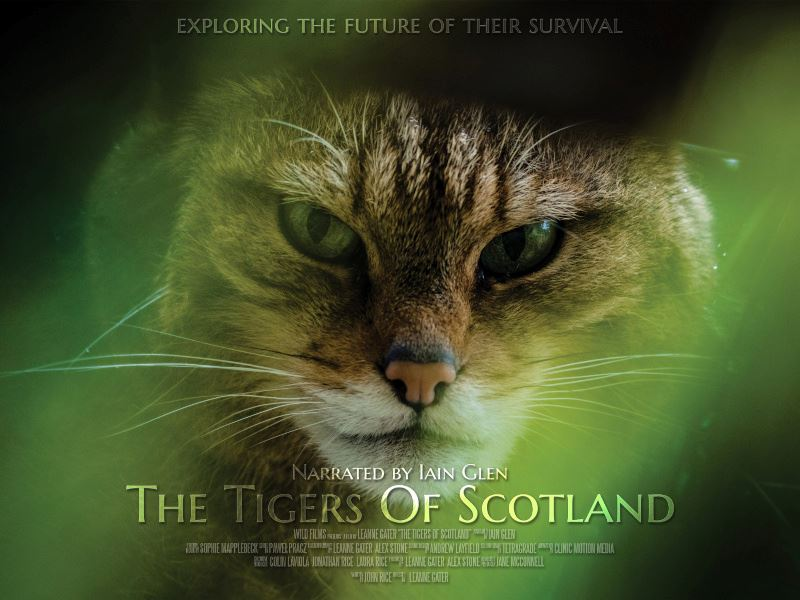 Tigers of Scotland