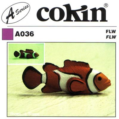 Image of Cokin A036 FLW Filter