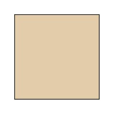 Lee 81D Colour Temperature Correction Resin Filter