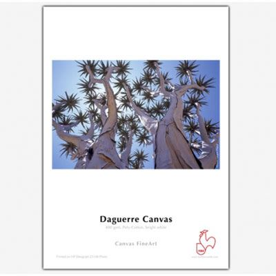 Hahnemuhle Daguerre Canvas 400gsm 17inch Roll 12m