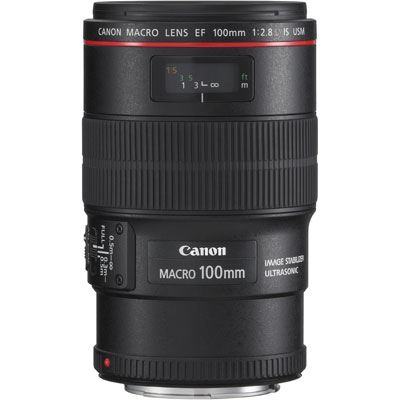 Image of Canon EF 100mm f2.8L Macro IS USM Lens