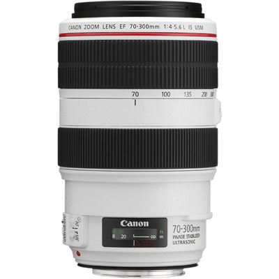 Canon EF 70-300mm f4-5.6 L IS USM Lens