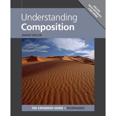 The Expanded Guide - Understanding Composition