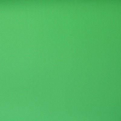 Image of WexPro 2m x 6m Vinyl Background - Chromakey Green