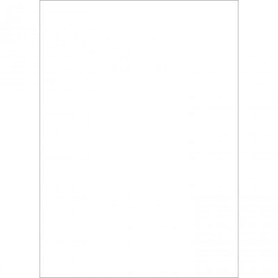 Westcott Basics X-Drop Background Cloth - White