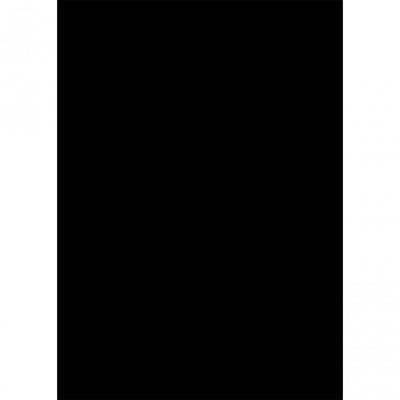 Westcott Basics X-Drop Background Cloth - Black
