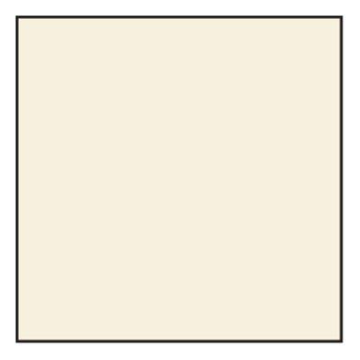 Lee 81A Standard Correction Filter (100mm Resin)