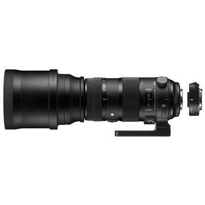 Image of Sigma 150-600mm f5-6.3 SPORT DG OS HSM Lens with 1.4x Teleconverter - Sigma SA Fit