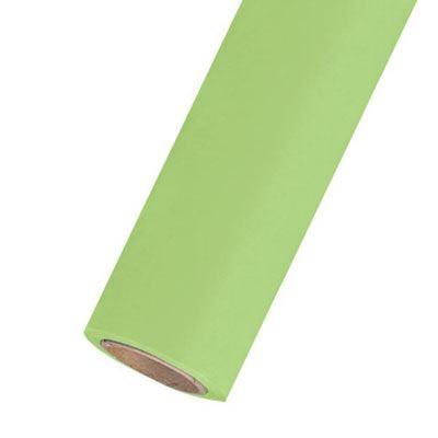 Calumet Summer Green 2.72m x 11m Seamless Background Paper