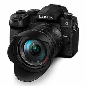 Panasonic Lumix DC-G90 Digital Camera with 14-140mm Lens