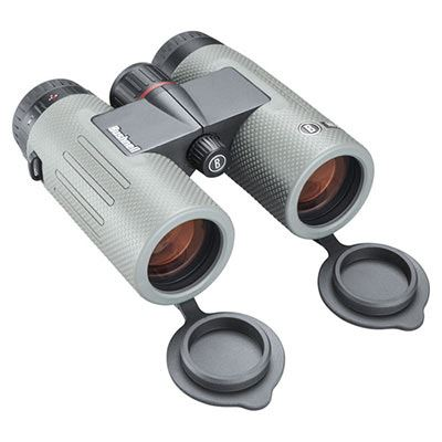 Image of Bushnell Nitro 10x36 Binoculars