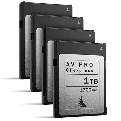 Image of Angelbird 1TB 1700MB/Sec AV PRO CFexpress (Type-B) - 4 Pack