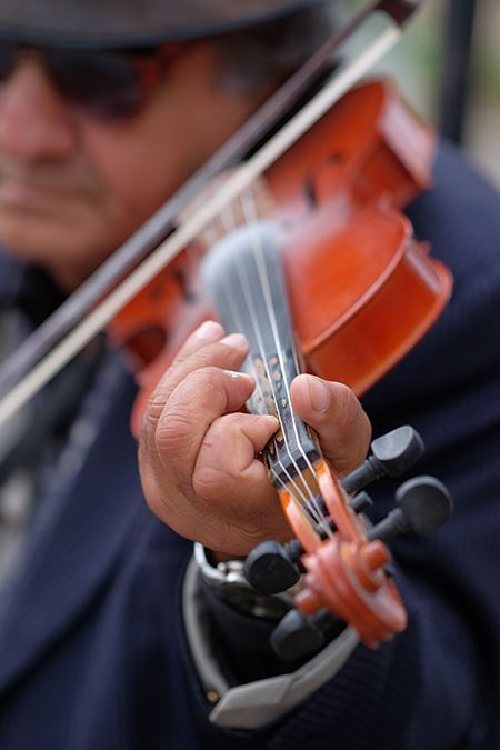 Fuji X-E2S sample image - close up violin