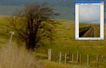 Field Zoom