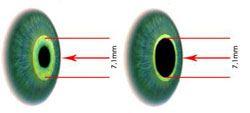 7.1mm Exit Pupil