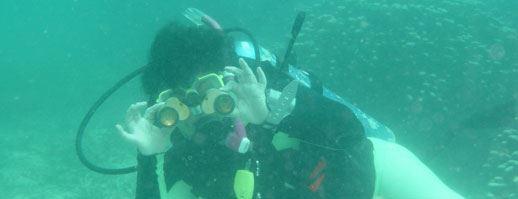 Using your binoculars underwater